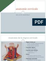 Radio anatomie cervicale