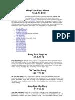 Wing Chun Idioms