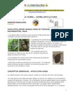 Apicultura Homa