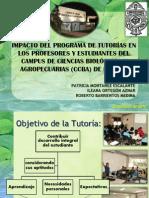 10.Impacto del Programa de Tutorías en los profesores y estudiantes del Campus de Ciencias Biológicas y Agropecuarias (CCBA) de la UADY