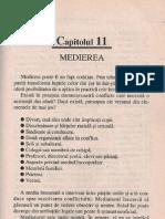 33219019 Ghid Practic Mediere