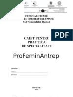 Caiet Practica.final
