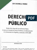 Derecho Publico Cassinelli Cap 1 a 4