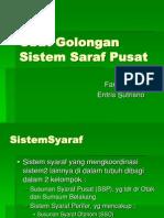 Obat Golongan Sistem Saraf Pusat