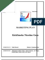 Advertising and Promotion Report Marketing Plan Kick Smoke Gum