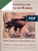 Cetreria - La Leyenda Del Aguila de Harris