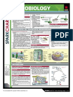 Microbiology spark chart