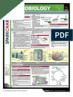 Microbiology spark chart
