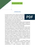 BUENAS PRÁCTICAS AGRÍCOLAS EN EL CULTIVO DE TOMATE