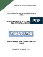 """trabajo final del curso de post grado: EVALUACIÓN DE IMPACTO AMBIENTAL"""""""