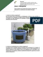 acuaponia-acuicultura-hidroponia
