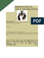 CARACTERISTICAS DE LOS CRUSTÁCEOS Y LOS MOLUSCOS