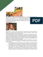 definición de alimentación y nutrición