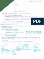 Embriología Básica T.10