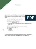 Tema Finala Cg -Punctaj