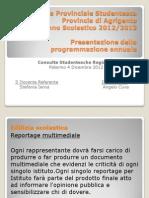 Programmazione annuale della Consulta Provinciale di Agrigento