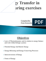 Energy Transfer in Cell During Exercise and Oxygen Metabolism and Transport - Palak