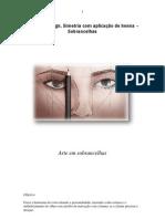 100450514-Curso-de-Design-Simetria-com-aplicacao-de-henna-–-Sobrancelhas