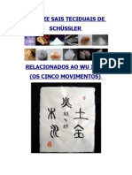 13361511 Os Doze Sais Teciduais de Schussler Aplicados a Terapia Tradicional Chinesa