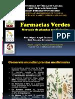 Farmacias Verdes Mercado Plantas Medicinales