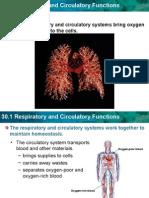 Respiratory & Circulatory System