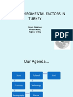 Macro Environmental Factors of Turkey (2)