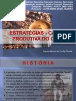 CADEIA PRODUTIVA DO CAFÉ