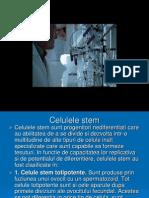Cardiomicitele si celulele stem pentru regenerare