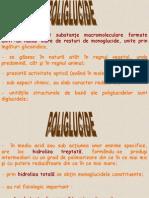 Poliglucide - Curs 6 - Tabel