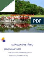 Manejo Sanitario e Mineralizacao de Equinos