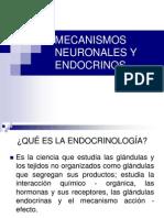 mecanismos neuronales y endnocrinos