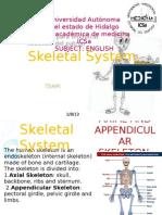 Skeletal System 1 (1)