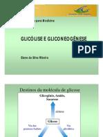 Glicolise e Gliconeogenese