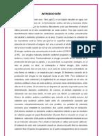 laboratorio informe quimica  n°10