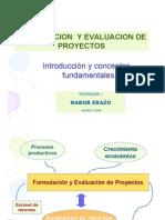 introduccionformulaproyectos