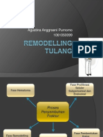 Remodelling Tulang