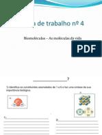 Proposta de trabalho nº4 biomoléculas