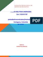 1esp. Tecnolog Gestion de Proyectos Original
