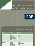 Perubahan Sistem Reproduksi Pada Lansia