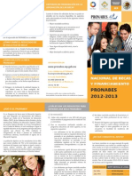 TripticoPRONABES2012.pdf