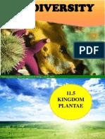 11.5 Kingdom Plantae-Gymnosperms Angiosperms 1 Hour (1)