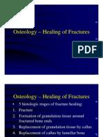 Healing of Fractures