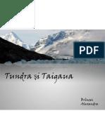 Tundra.ppt
