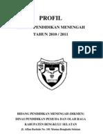 Profil Dikmen 2011