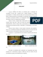 Projet Pedalinho2010 Rm2