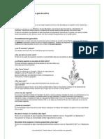 Drosera capensis, breve guiá de cultivo.