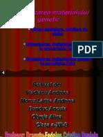 Organizarea Materialului Genetic
