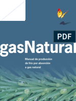 Absorsion a Gas a Natural