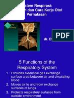 kuliah anatomi respirasi