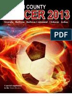 Soccer 2013 Tab